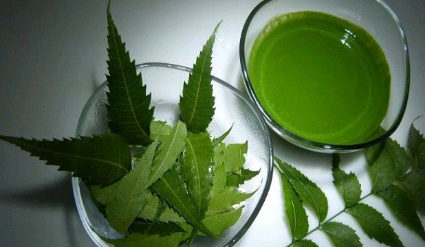Neem Extract Market by P&S Market Research