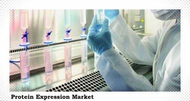 Protein Expression market